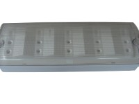 Emergency Lighting – IP65 LED bulkhead